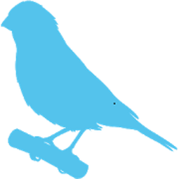 Phone Canary