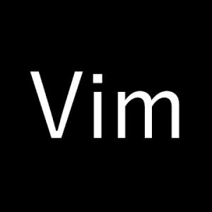Vim Master