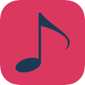 Smart Player Pro - Smartest music player