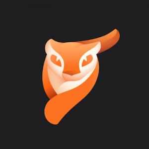 Enlight Pixaloop